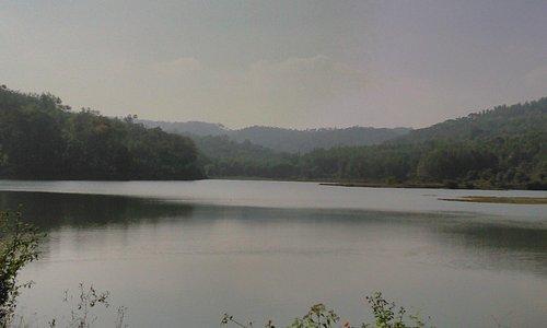 Lake view.