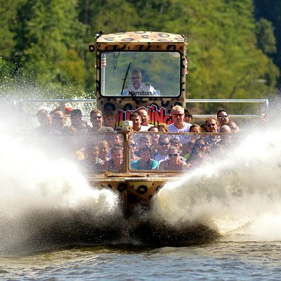 Wildthing Jet Boat Tour