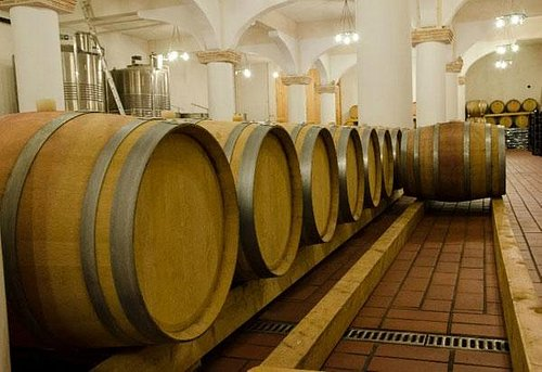 The winery cellar