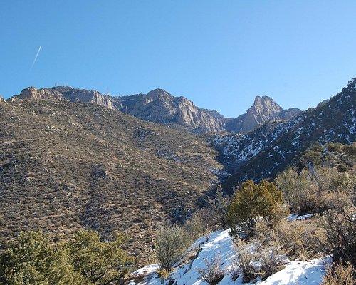 View from La Luz trail.