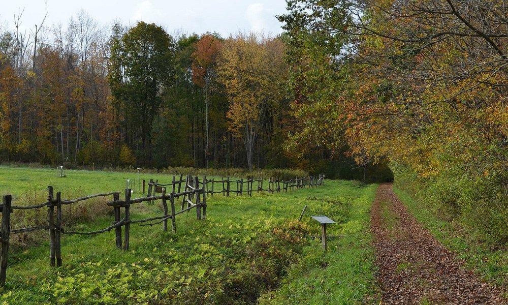 Nice walking trail