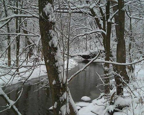 The Black River that runs through the park