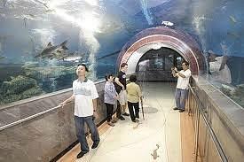 Suphanburi Aquarium