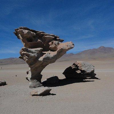 árvore de pedra