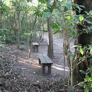benches are scattered throughout the park