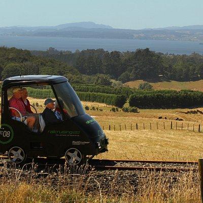 Overlooking Lake Rotorua