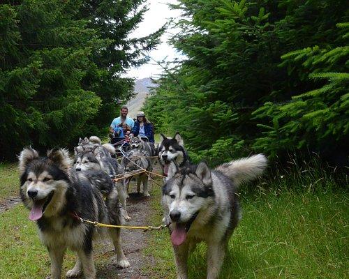 Running thru beautiful Naseby Forest