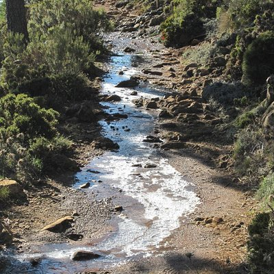 Sierra Bermeja - ice underfoot