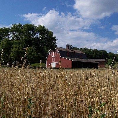 Fort Ransom State Park Sunne Farm Barn - Fort Ransom, ND
