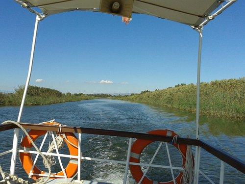 Cruising the waterways