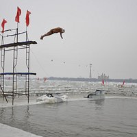 Ice Swimmers 2