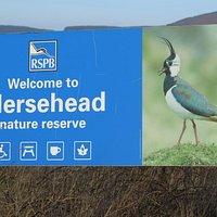 Mersehead Nature Reserve
