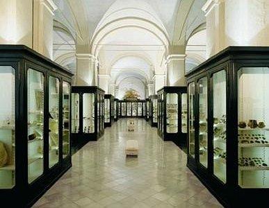 Sala dell'Archeologia