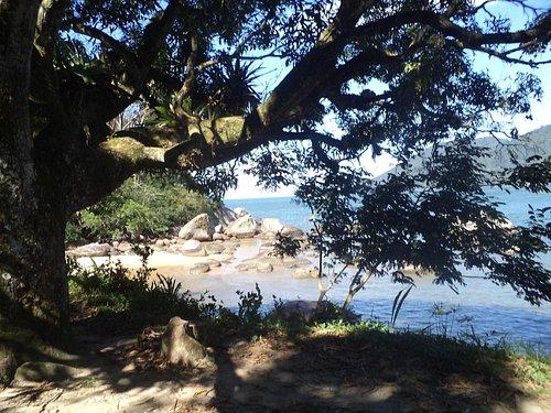 Praia Preto