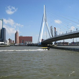 Water taxi underneath the Erasmus Bridge