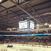 PSU Men's Ice Hockey at Pegula Ice Arena