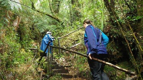 Hiking the trail in the rain