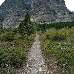 Start of the Trailhead