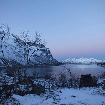 Grøtfjorden in winter...so pretty!