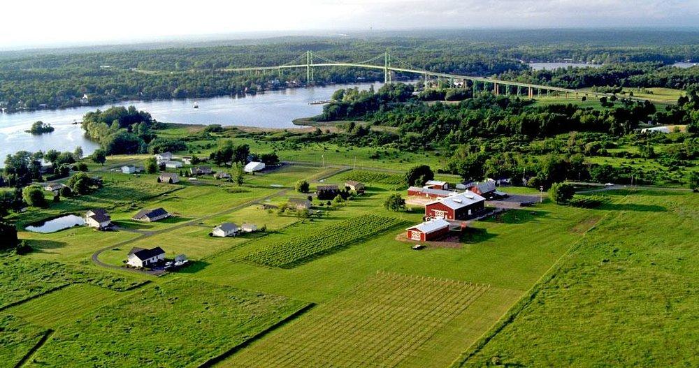 Thousand Islands Winery and Thousand Islands Bridge