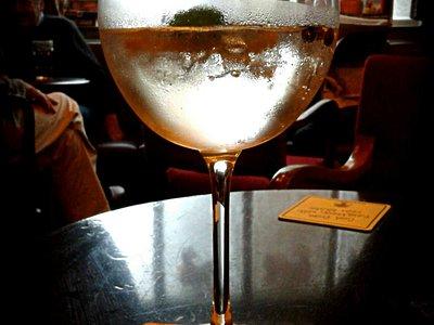 A proper Gin & Tonic
