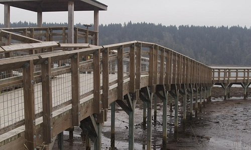 Nisqually Foot Bridge