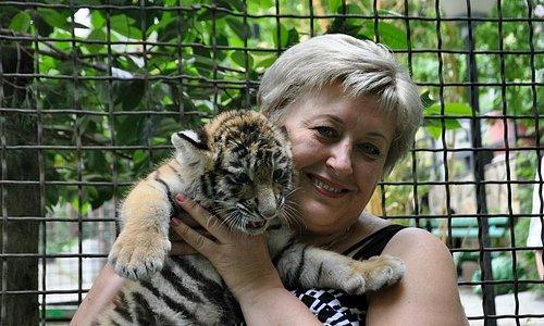 Здесь можно зайти в клетку с тигром