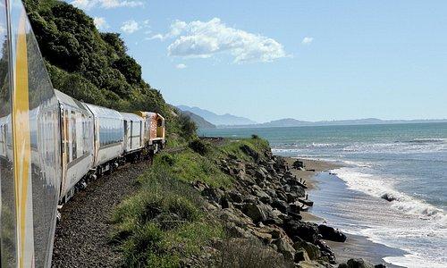 Coastal Pacific | Hugging the Pacifiic Coastline near Kaikoura