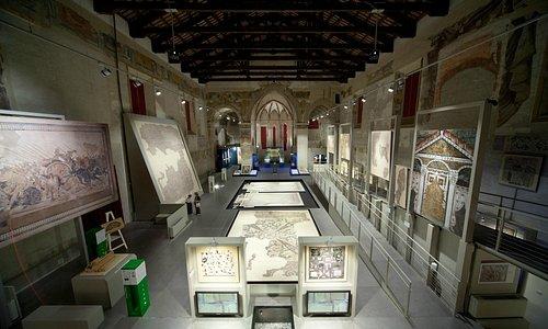 Museo Tamo, interno