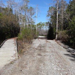 Trail (boardwalk when water level is up)