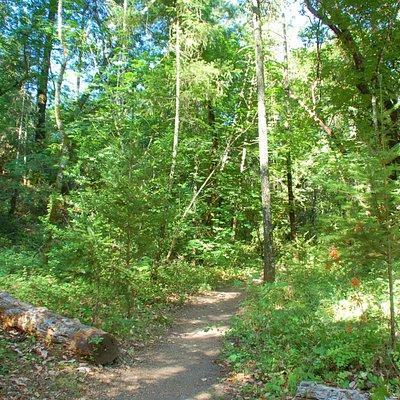 Bothe-Napa Trails