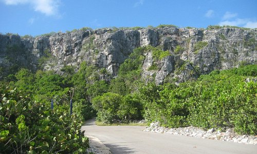 View of the Bluff driving on the island's South side