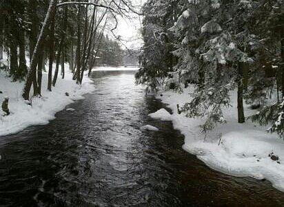 Bron över Gammelström på väg in i Tyresta