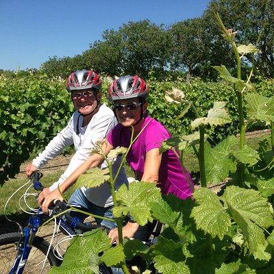 Bike the Vines Tour