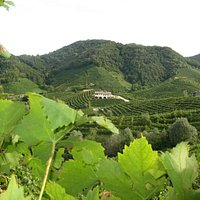 Valdobbiadene Prosecco Superiore Land...where Perlage was born!