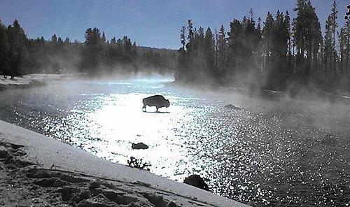 Snowmobiling through Yellowstone