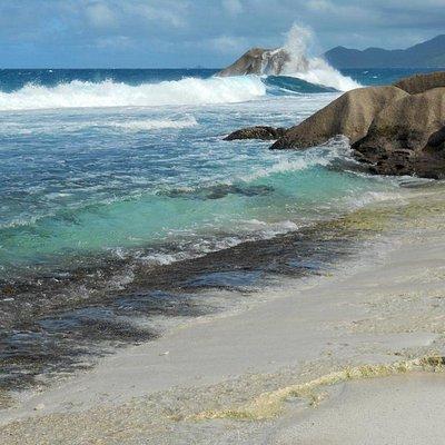 Lungo il percorso - Spiaggia di Anse Aux Cedres