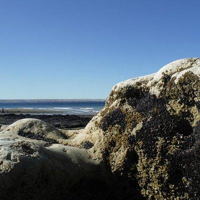 praia do Parque Histórico Puenta Cuevas