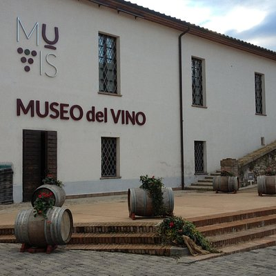 www.muvis.it