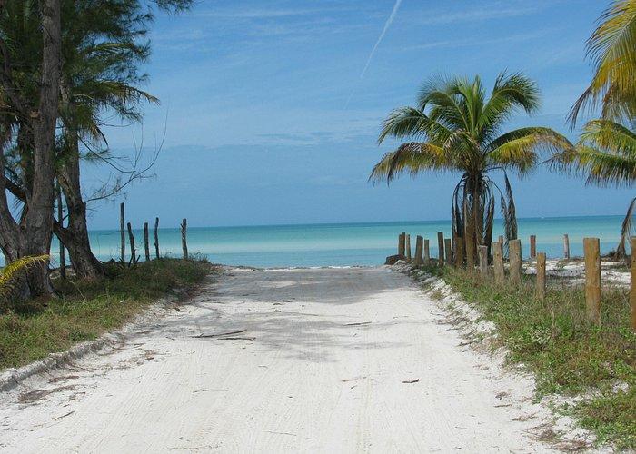 Golf cart access road to beach