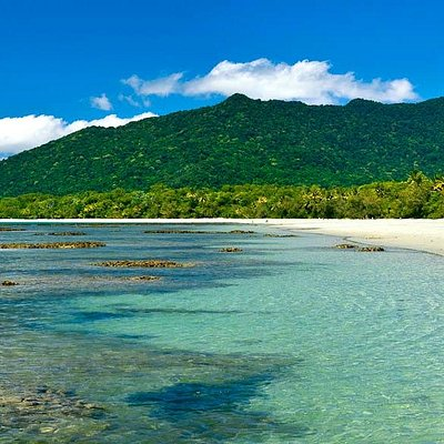 Where the Rainforest meets the Reef, Cape Tribulation Beach