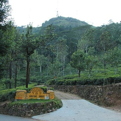 The Hantana Mountain that people hike up
