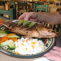 Fried Whole Red Snapper...FANTASTIC!