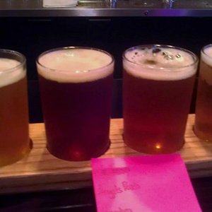 Sampler of four delicious beers