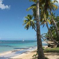 Playa Punta Popy, Las Terrenas, République Domonicaine