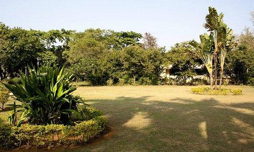 Nandan Van Garden Raipur
