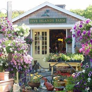 Spring at Five Islands Farm!