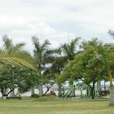 Parque de Coqueiros - Florianópolis II