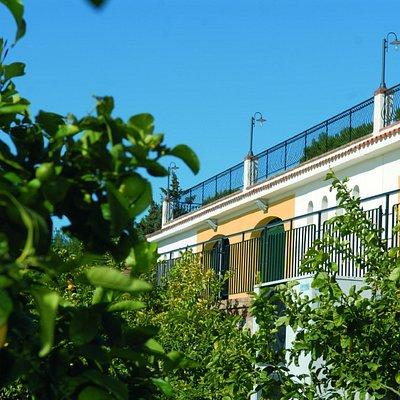 Azienda Agricola Quignones