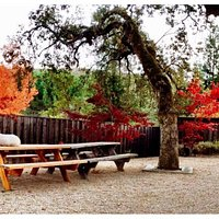 Fall at the tasting room!